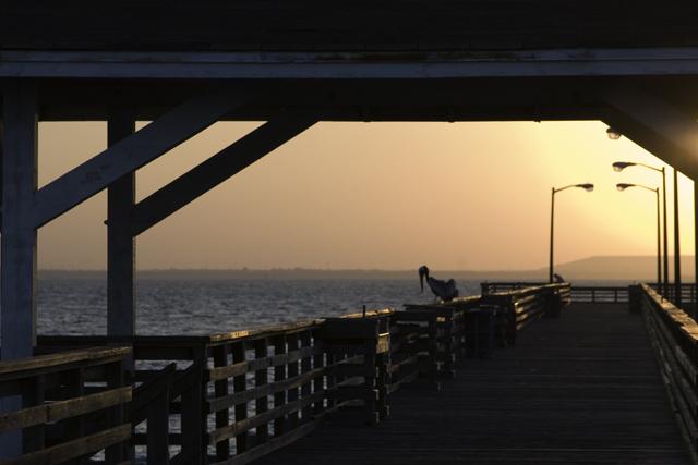 Time-less-image Tampa Bay