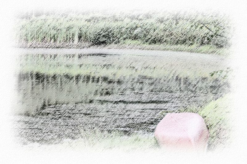 Time-less-image Fading Pond