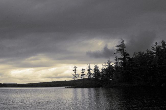 Time-less-image Maine Waldo